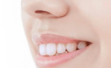 根本的な歯周病治療THP
